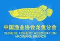中国渔业协会龙鱼分会
