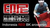 Indo red 印尼黑金刚鱼场