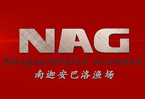 印尼南迦安巴洛(NAG)渔场