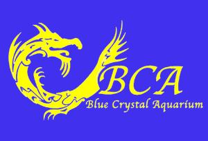BCA欧亿平台注册