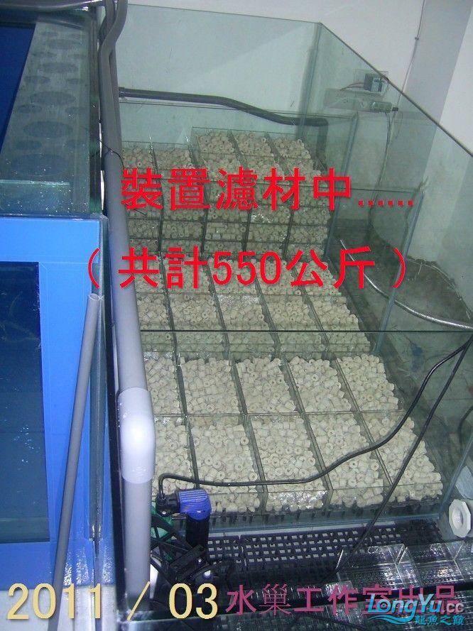 石家庄热带鱼交易巨資打造亞洲最頂尖的水族生態工藝-3系統生態篇 石家庄水族批发市场 石家庄龙鱼第3张