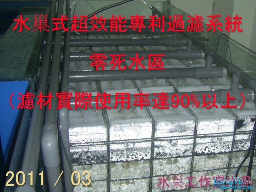 石家庄热带鱼交易巨資打造亞洲最頂尖的水族生態工藝-3系統生態篇 石家庄水族批发市场 石家庄龙鱼第4张