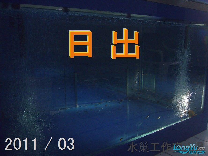 石家庄热带鱼交易巨資打造亞洲最頂尖的水族生態工藝-3系統生態篇 石家庄水族批发市场 石家庄龙鱼第16张