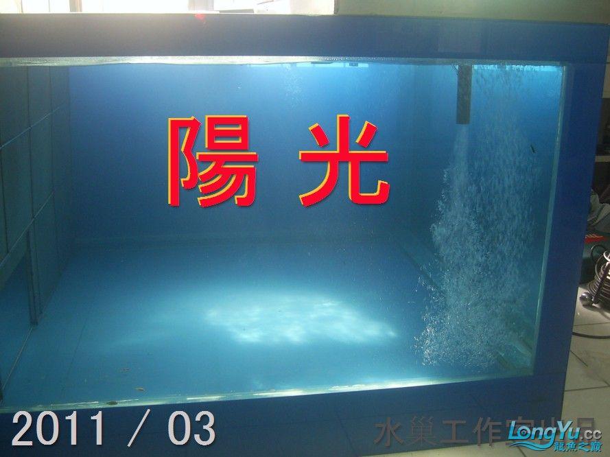 石家庄热带鱼交易巨資打造亞洲最頂尖的水族生態工藝-3系統生態篇 石家庄水族批发市场 石家庄龙鱼第17张
