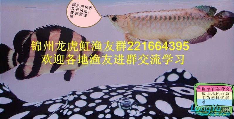 QQ图片20130522001947.jpg