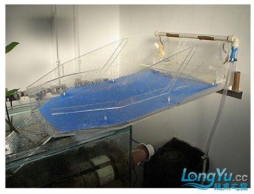 海水缸ats系统1.jpg