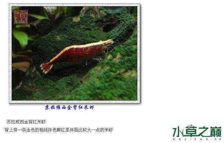 }2_)K74688UV6[[7%PM3VAD.jpg