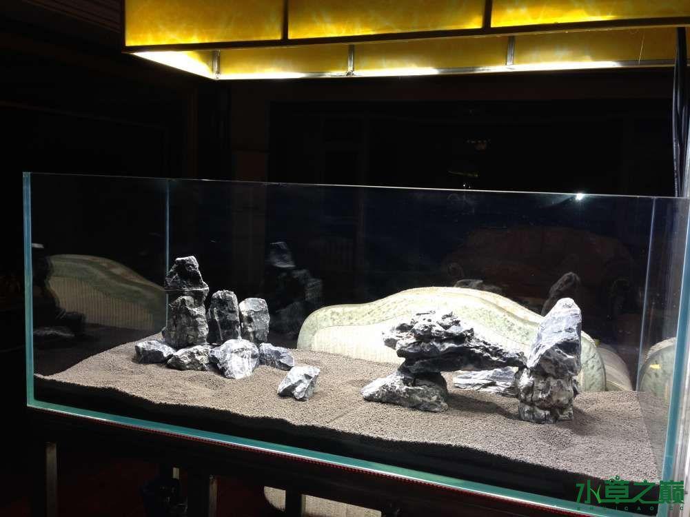 大家帮看看石头摆的怎么样 南昌水族批发市场 南昌龙鱼第7张