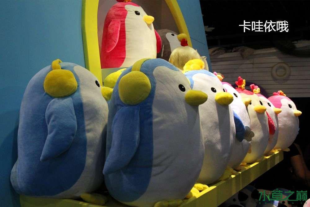 假期天津自由行142P呈现 南昌龙鱼论坛 南昌龙鱼第12张