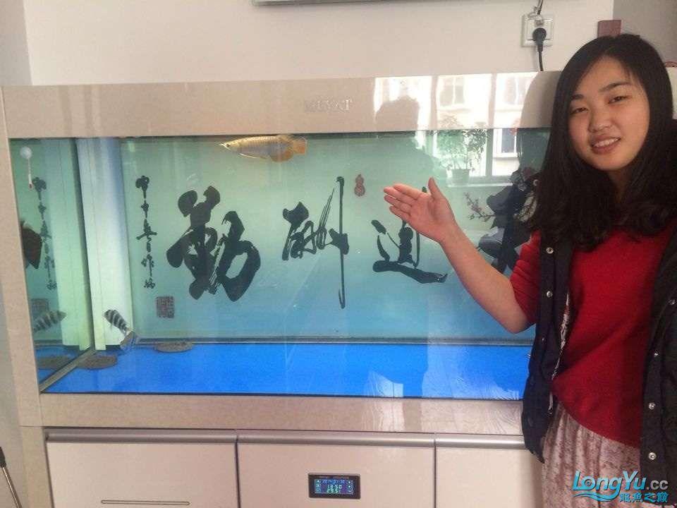 五一乐悠悠龙祥渔场金龙来老婆帮喂鱼 3米地缸放水 哈尔滨水族批发市场 哈尔滨龙鱼第5张