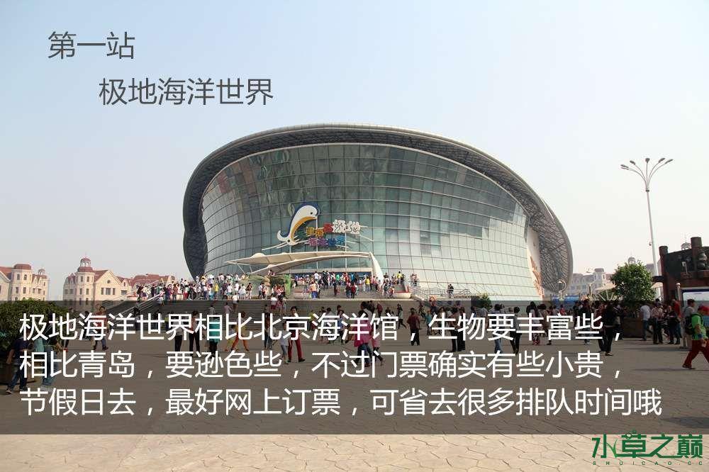 假期天津自由行142P呈现 南昌龙鱼论坛 南昌龙鱼第4张