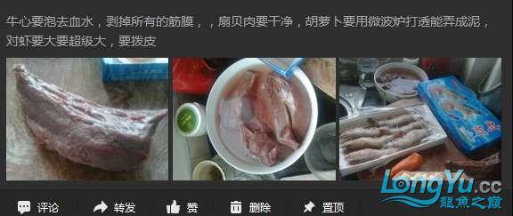 申精 鱼缸历时50天终于完全体小鱼已经入缸外加牛心汉堡制作超多图杀死猫 南充龙鱼论坛 南充水族批发市场第13张