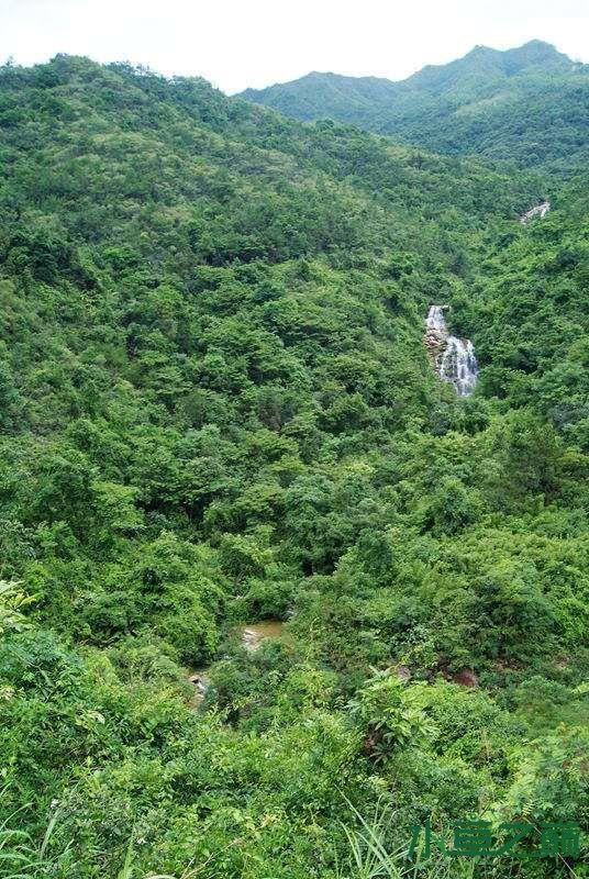 单骑闯北山离天三尺三188P 西宁龙鱼论坛 西宁龙鱼第39张