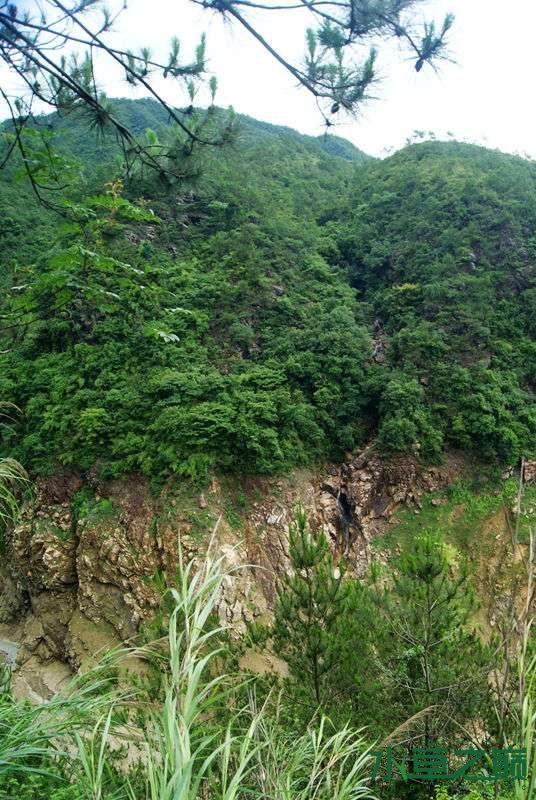 单骑闯北山离天三尺三188P 西宁龙鱼论坛 西宁龙鱼第56张