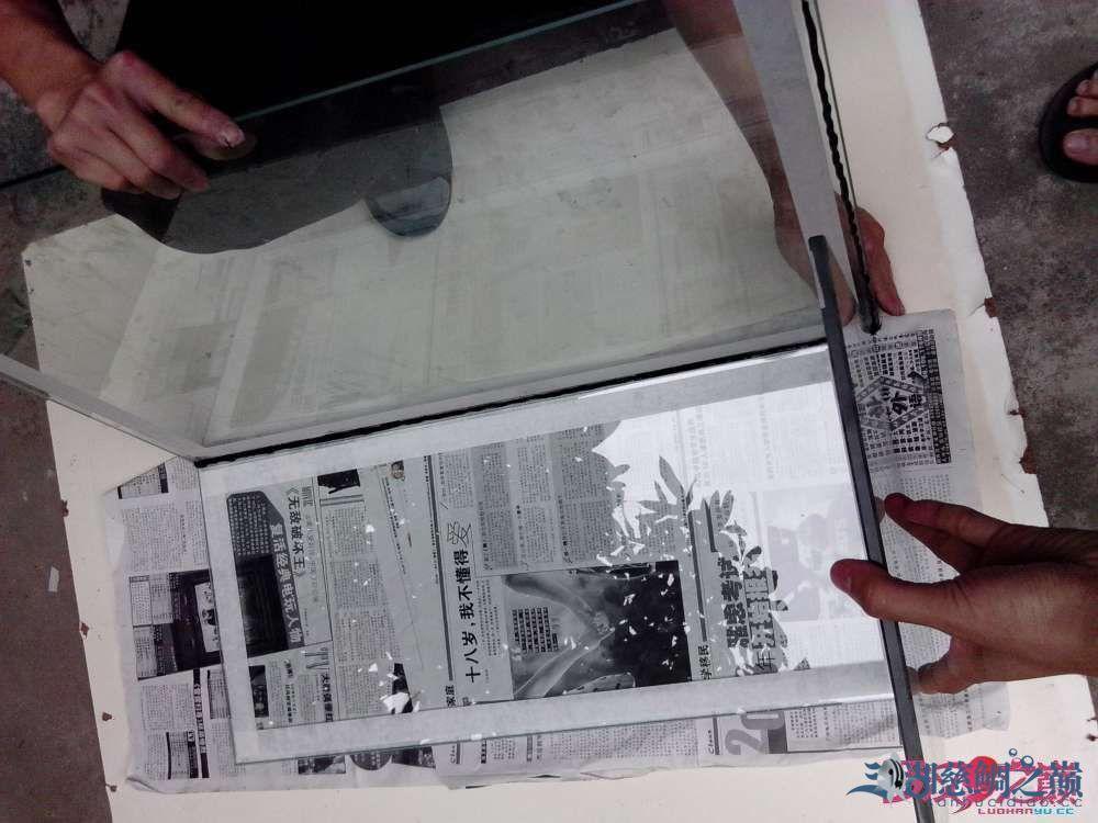 上滤鱼缸制作超全教程看完自己开缸店 北京龙鱼论坛 北京龙鱼第10张