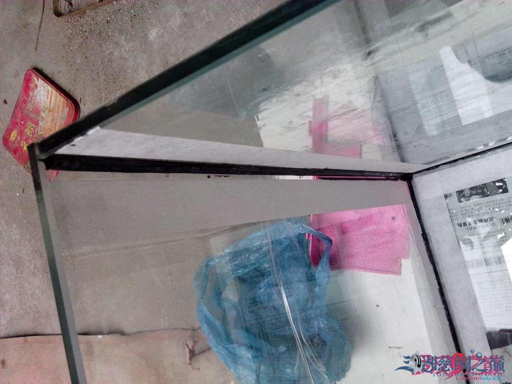 上滤鱼缸制作超全教程看完自己开缸店 北京龙鱼论坛 北京龙鱼第17张