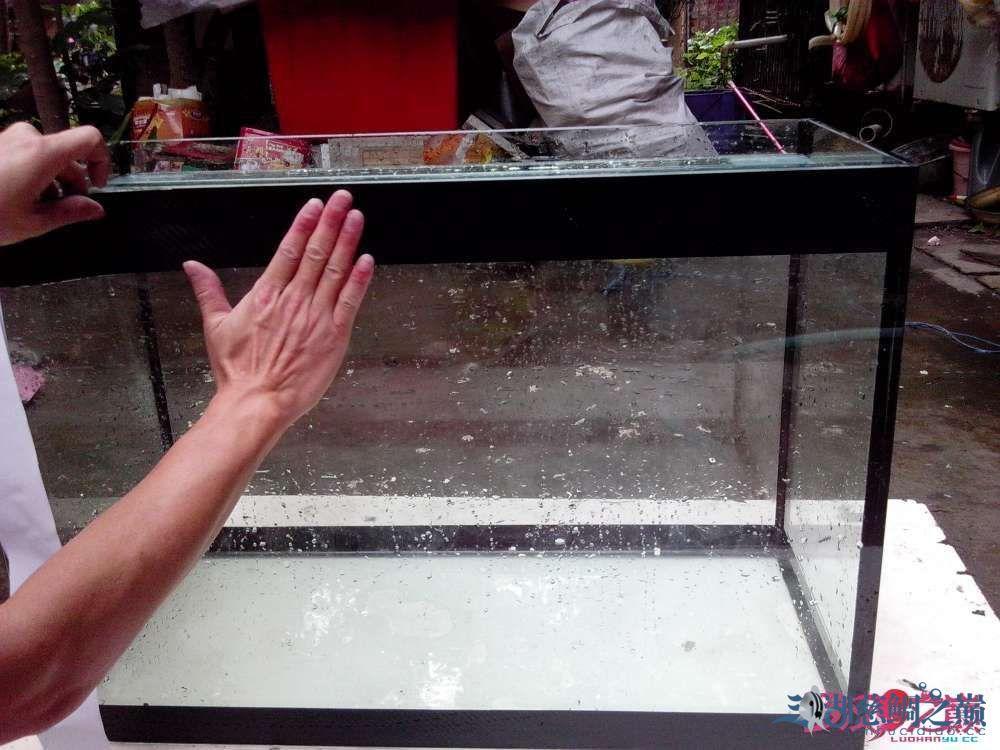 上滤鱼缸制作超全教程看完自己开缸店 北京龙鱼论坛 北京龙鱼第98张
