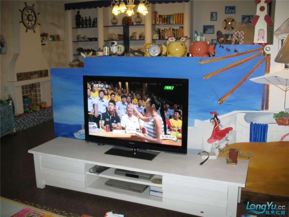 地中海的家配地中海的缸 吉林龙鱼论坛 吉林龙鱼第46张