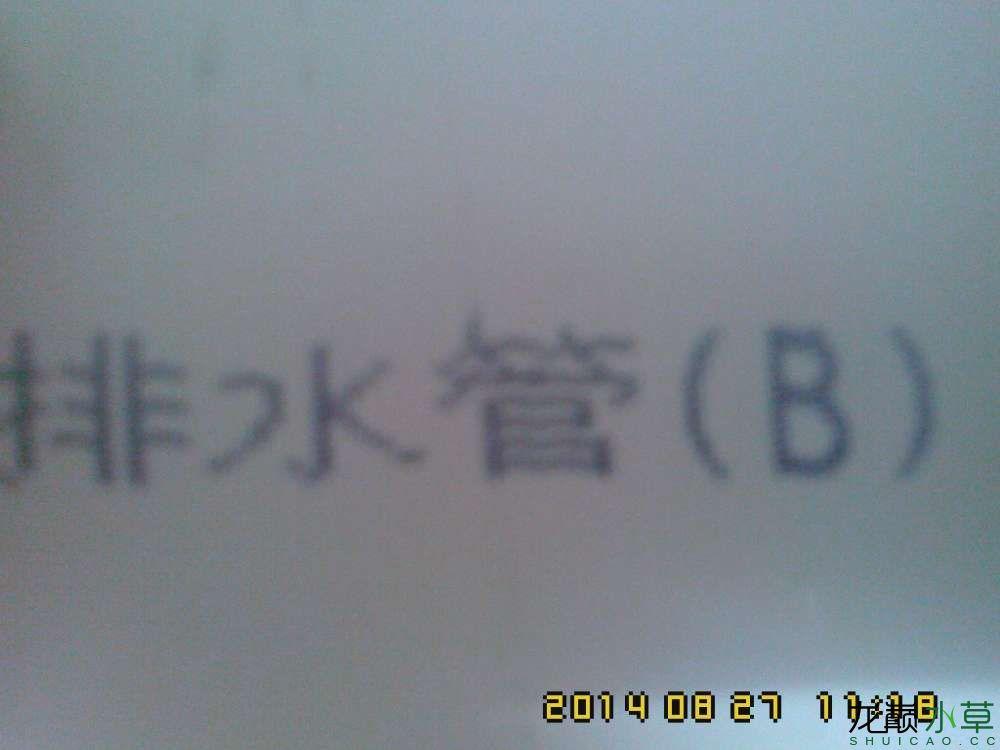 IMG0827111800.jpg
