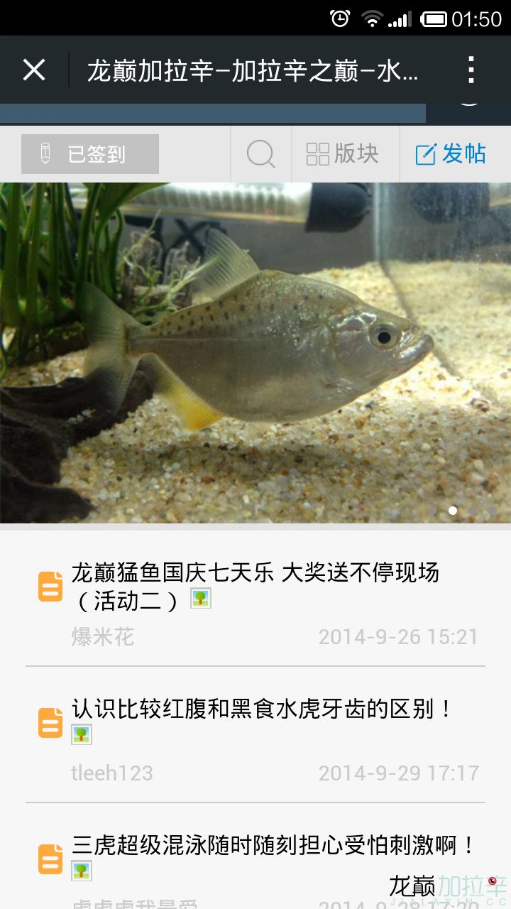 screenshot_2014-10-03-01-50-06.png