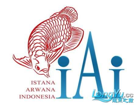Logo IAI deal BIG_resize.jpg