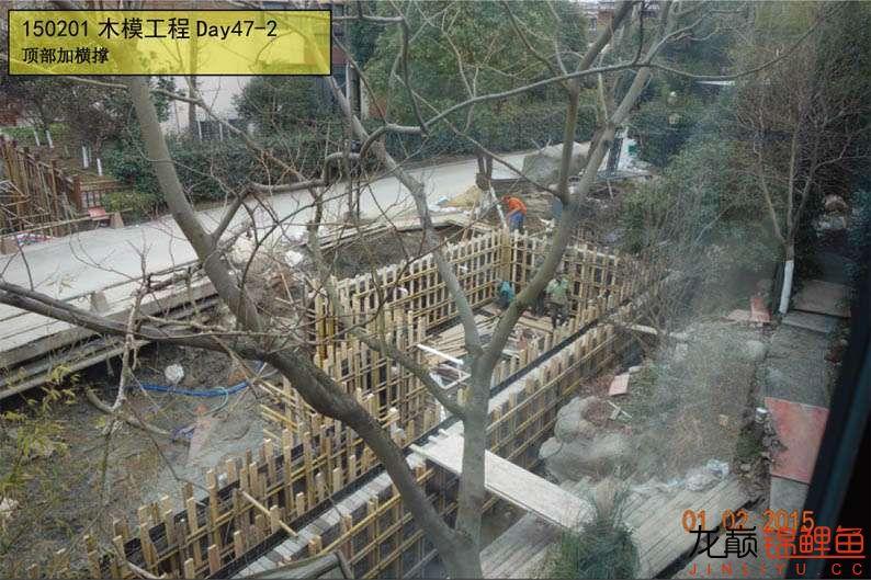 150201 木模工程Day47-2.jpg