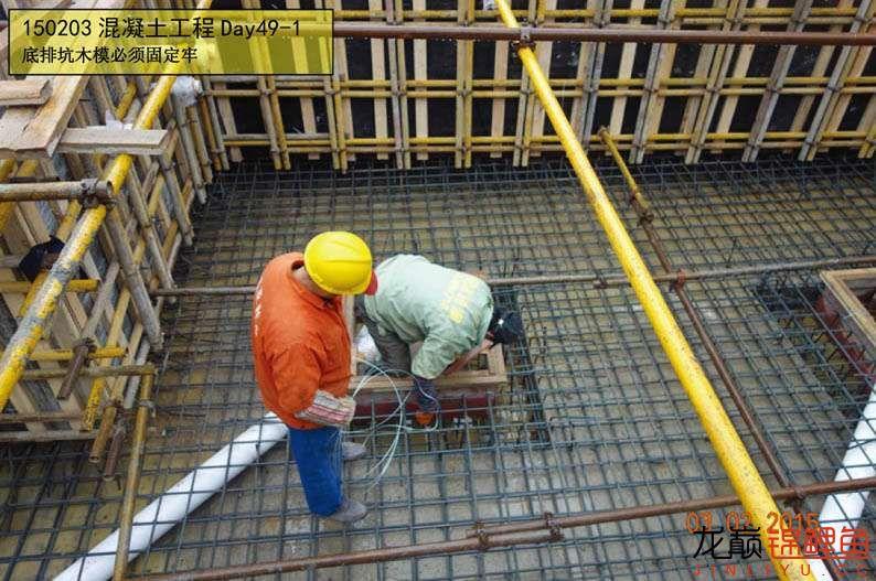 150203 混凝土工程Day49-1.jpg