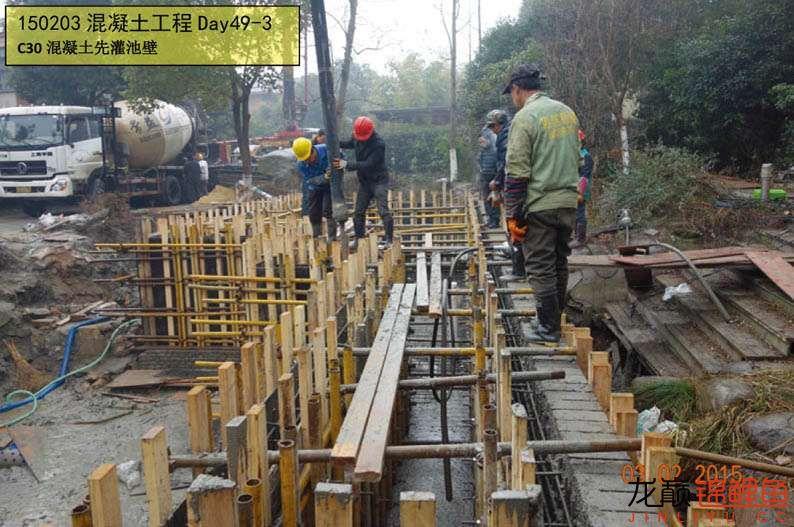 150203 混凝土工程Day49-3.jpg