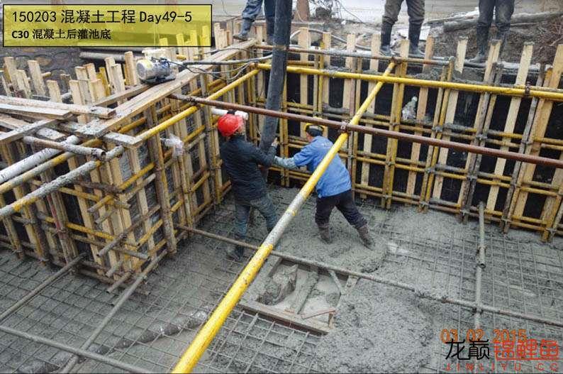 150203 混凝土工程Day49-5.jpg