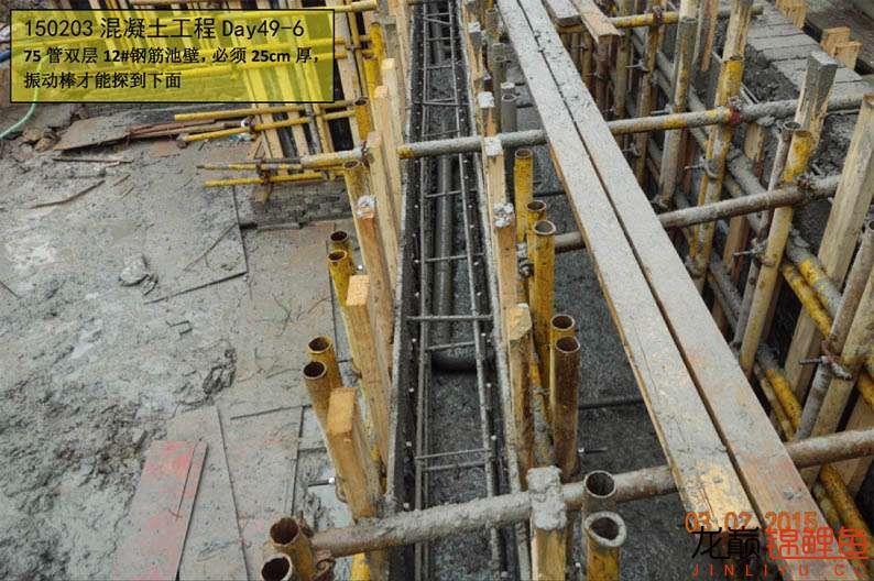 150203 混凝土工程Day49-6.jpg