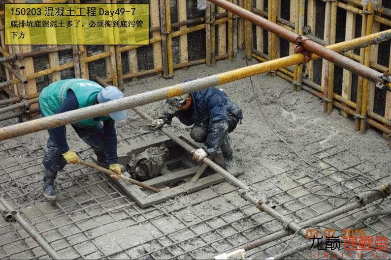 150203 混凝土工程Day49-7.jpg