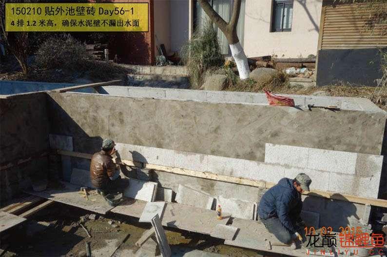 150210 贴外池壁砖Day56-1.jpg