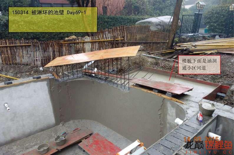 150314 被淋坏的池壁 69-1.jpg