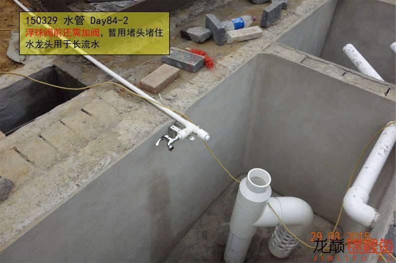 150329 水管 84-2.jpg