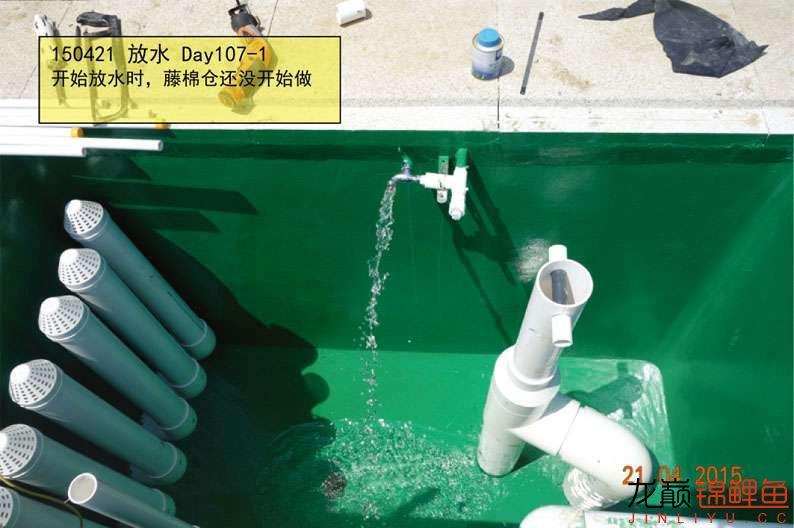 150421 放水 107-1.jpg