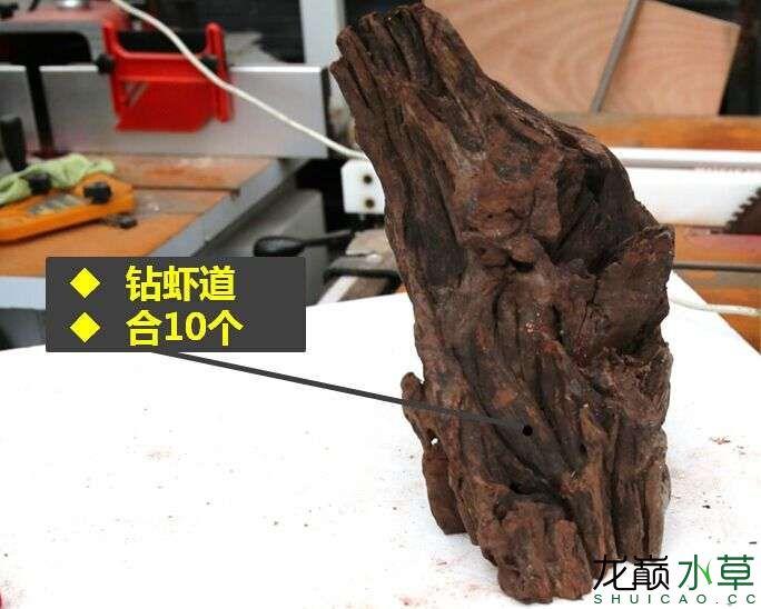 沉木制作辣椒和虾共同的家园 贵阳龙鱼论坛 贵阳龙鱼第8张