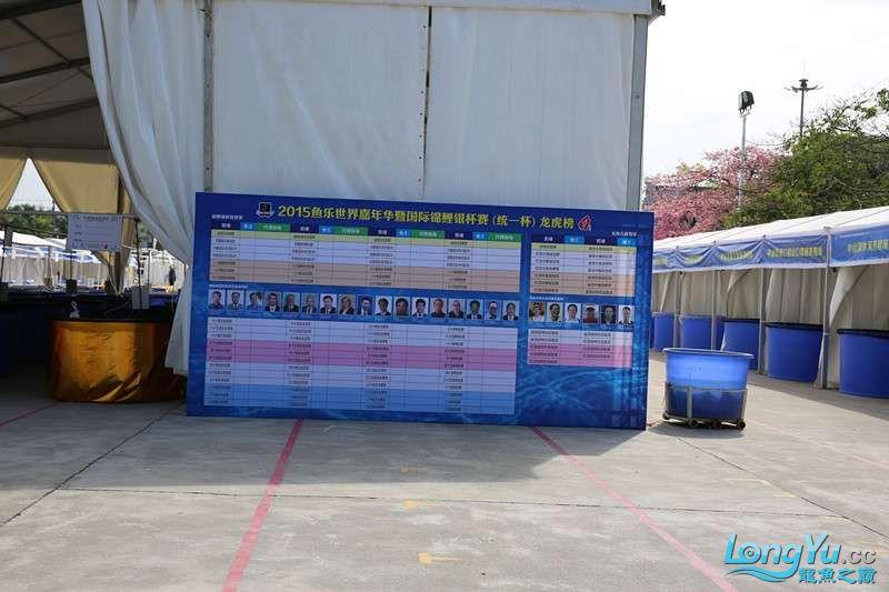 首届亚太龙鱼大赛2015年11月27日由中山广播电视台和在中山 烟台观赏鱼 烟台龙鱼第1张