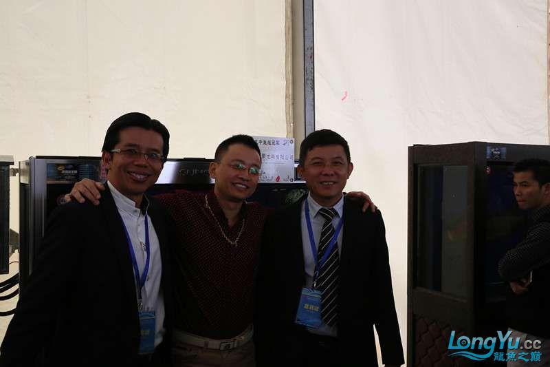 首届亚太龙鱼大赛2015年11月27日由中山广播电视台和在中山 烟台观赏鱼 烟台龙鱼第12张