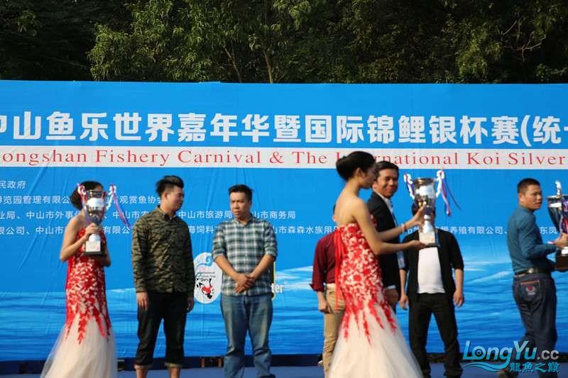 首届亚太龙鱼大赛2015年11月27日由中山广播电视台和在中山 烟台观赏鱼 烟台龙鱼第24张