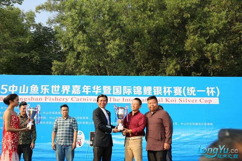 首届亚太龙鱼大赛2015年11月27日由中山广播电视台和在中山 烟台观赏鱼 烟台龙鱼第25张