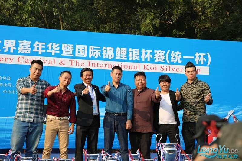 首届亚太龙鱼大赛2015年11月27日由中山广播电视台和在中山 烟台观赏鱼 烟台龙鱼第30张