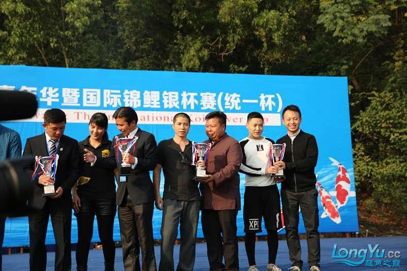 首届亚太龙鱼大赛2015年11月27日由中山广播电视台和在中山 烟台观赏鱼 烟台龙鱼第31张