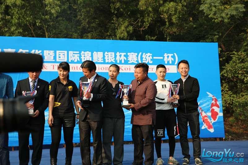 首届亚太龙鱼大赛2015年11月27日由中山广播电视台和在中山 烟台观赏鱼 烟台龙鱼第32张