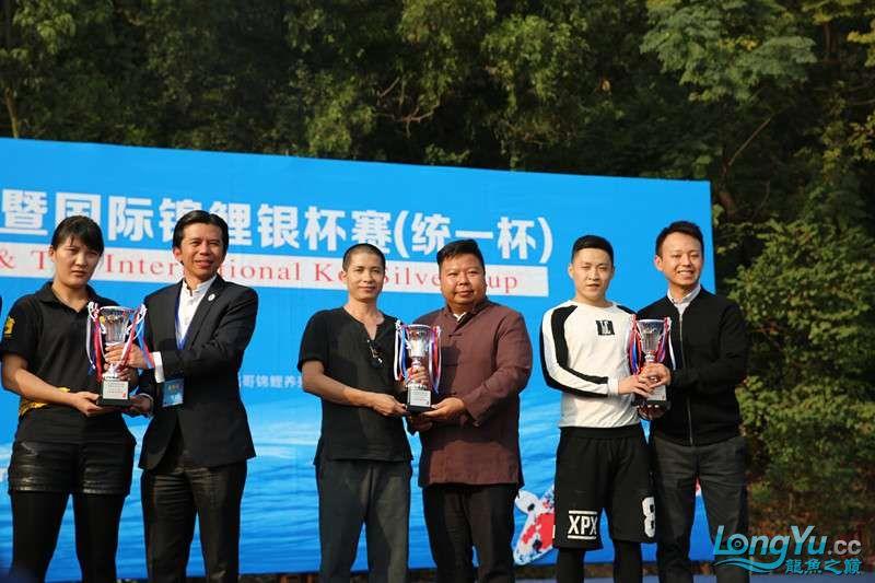 首届亚太龙鱼大赛2015年11月27日由中山广播电视台和在中山 烟台观赏鱼 烟台龙鱼第34张