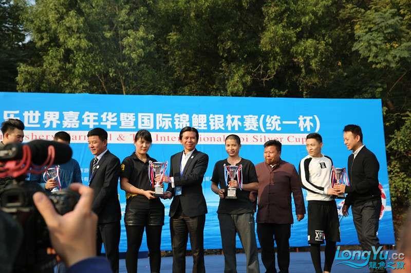 首届亚太龙鱼大赛2015年11月27日由中山广播电视台和在中山 烟台观赏鱼 烟台龙鱼第35张
