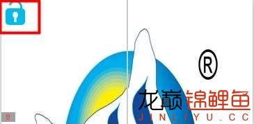 仟湖庆元旦迎新年15台艾洁纳米净水器免费送 红龙鱼饲料 龙鱼饲料第28张