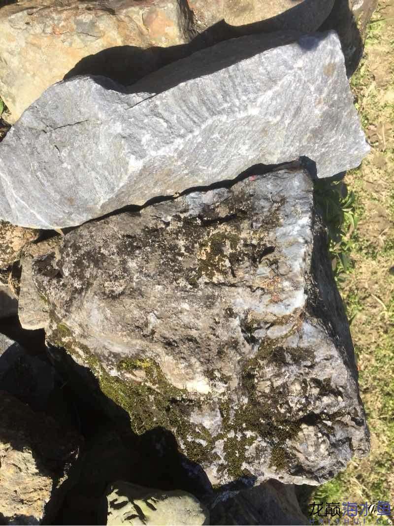 老家这个是青龙石吗?