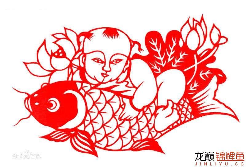 """年年有鱼·""""余"""" 南昌水族批发市场 南昌龙鱼第3张"""