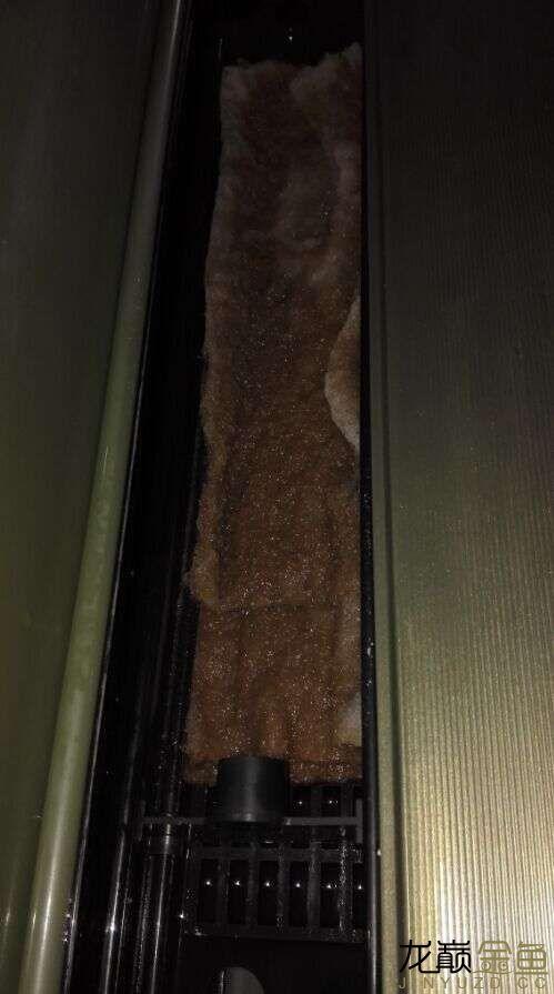 这是鱼缸顶部的原有过滤槽