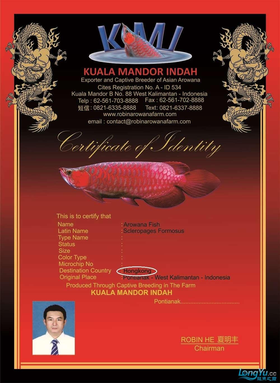 sertifikat merah kmi terakhir12.jpg
